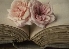 D'où vient l'odeur des vieux livres ?