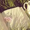 14 perles dénichées au coeur de la rentrée littéraire