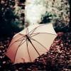 La fille au parapluie rose (2)